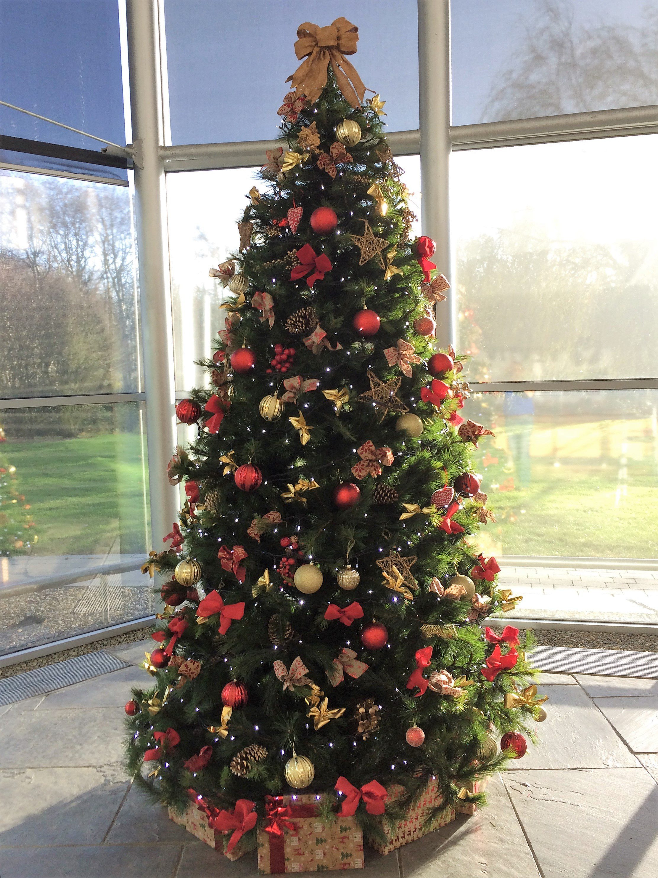 corporatechristmastrees.ie