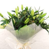 Care Tips - Lilies