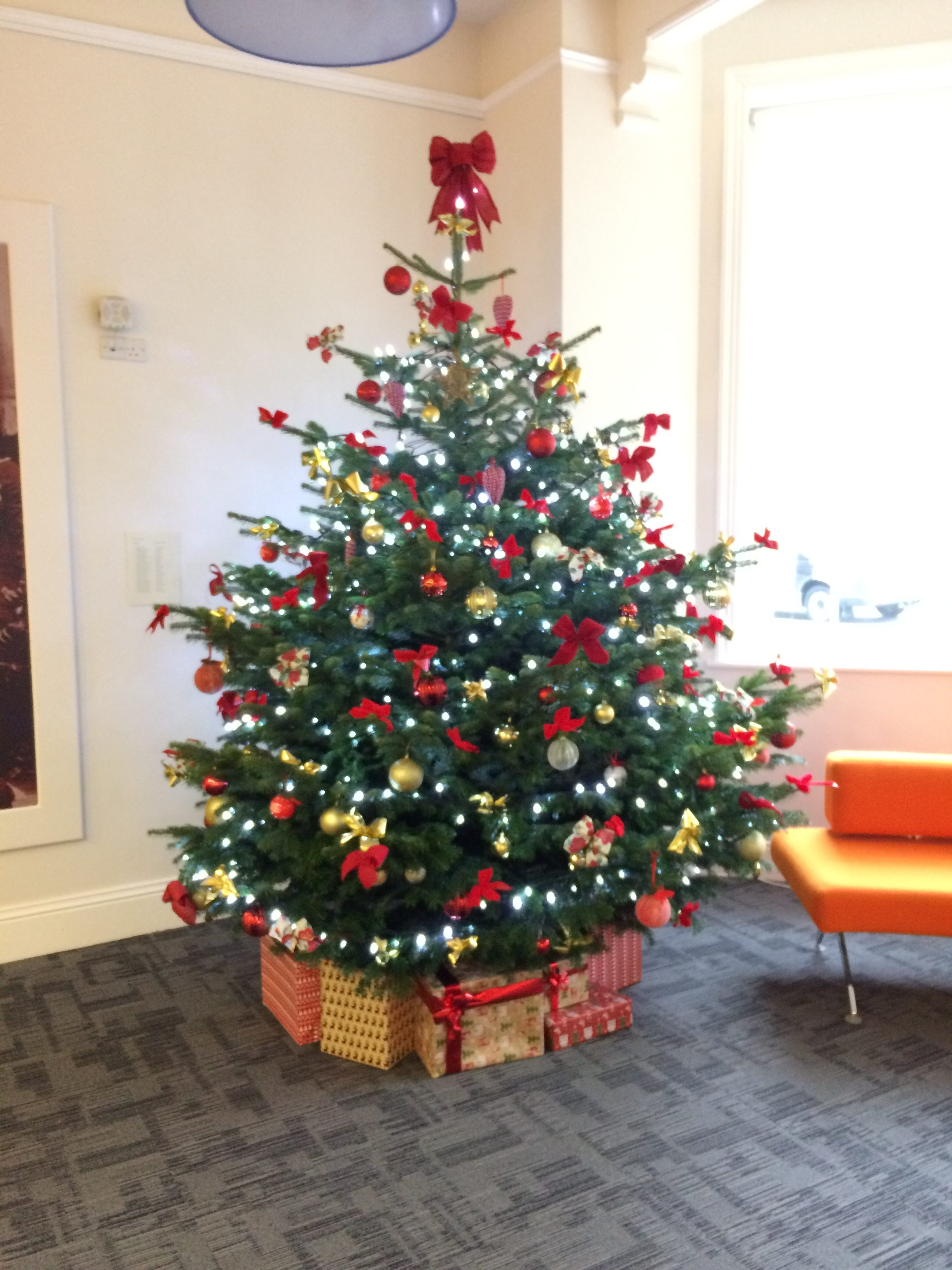 Rent Christmas Decorations.Christmas Tree Hire Flowers Forever The Designer Florist