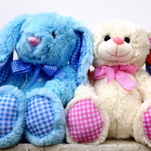 Med Baby Boy&Girl Teddys €15