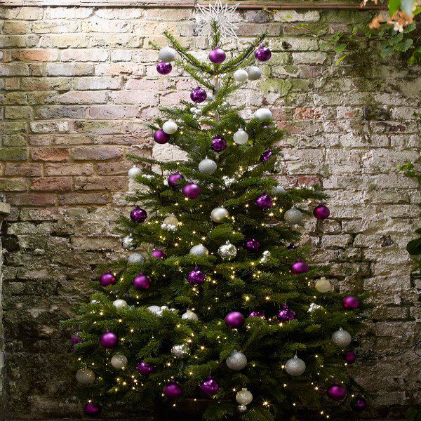 corporate christmas tree decoration service flowers forever the designer florist limerick - Christmas Tree With Purple Blue And Silver Decorations