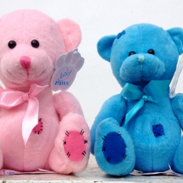 Sml Baby Boy&Girl Teddys €7.00